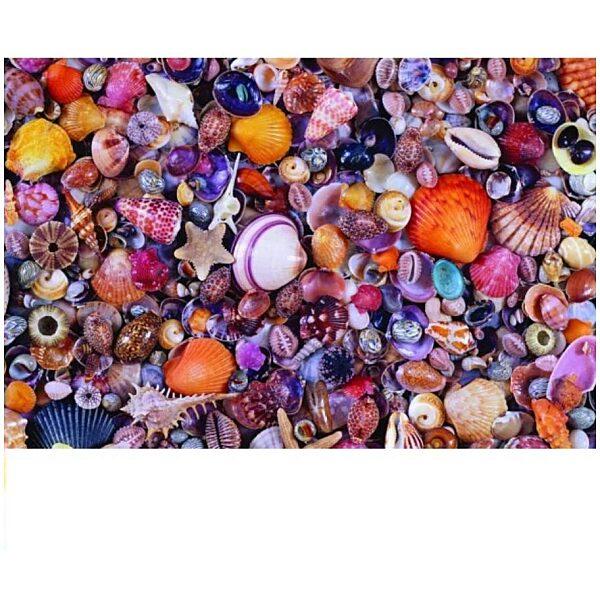 Kagylók puzzle