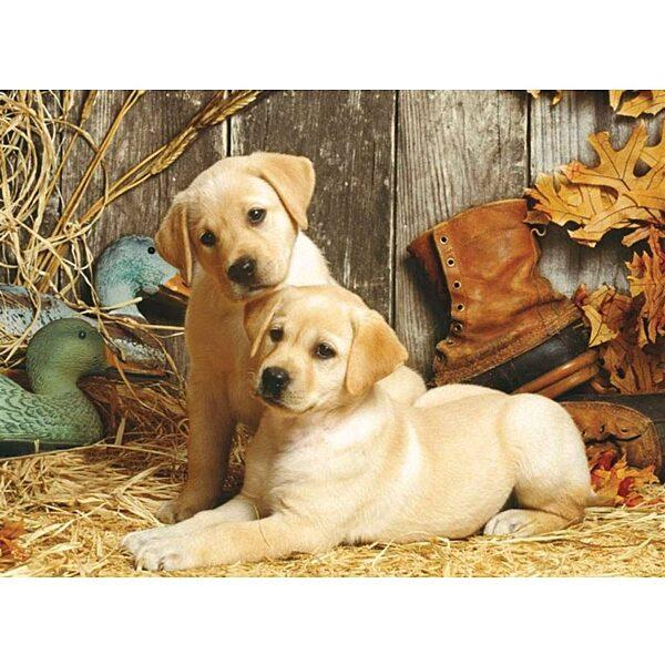 Labradorok 1500 db-os puzzle - Clementoni - 1. kép
