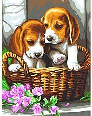 Kutyák kosárban festhető kép számok szerint - 1. Kép